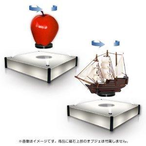 levi2.jpg